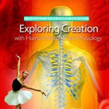 Apologia Exploring Creation with Anatomy